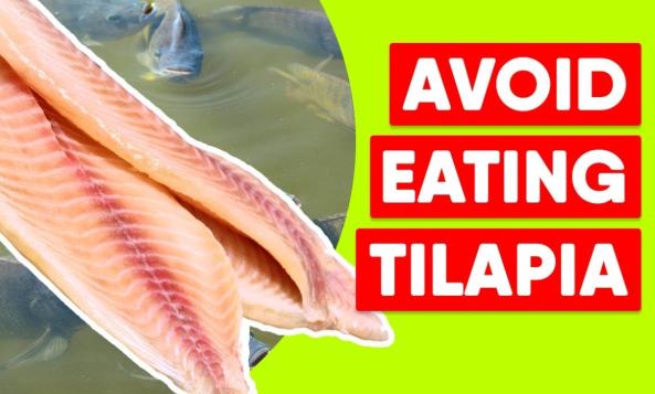 DON'T EAT TILAPIA!!!!!!